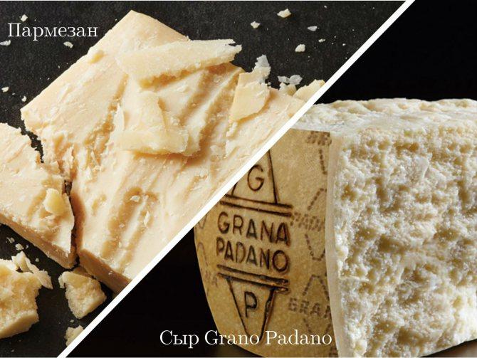 Сыр пармезан – все  секреты приготовления и употребления