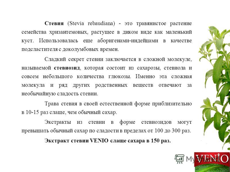 Стевия и стевиозид.  вред и польза - 1000.menu