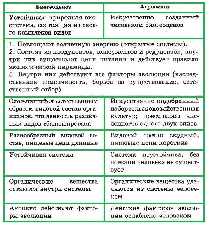 24.структура экосистем