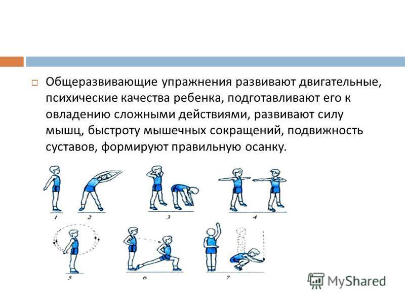 Комплекс общеразвивающих упражнений по физкультуре: тренировка для студентов и школьников