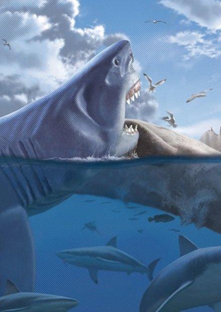 Мегалодон: самая большая акула в мире — как они вымерли?   new-science.ru
