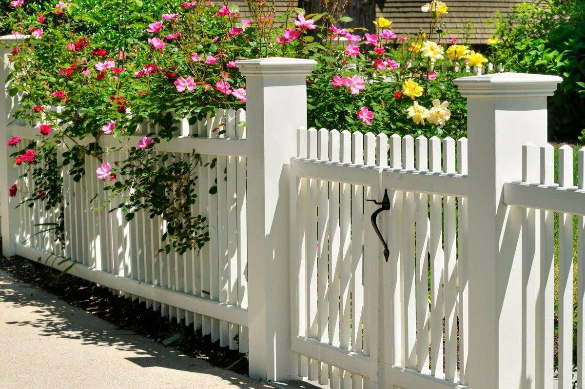Какой забор обойдется вам дешевле всего: лучшие варианты недорогих ограждений   дела огородные (огород.ru)
