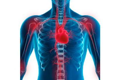 Ревматизм костей: симптомы, лечение, профилактика