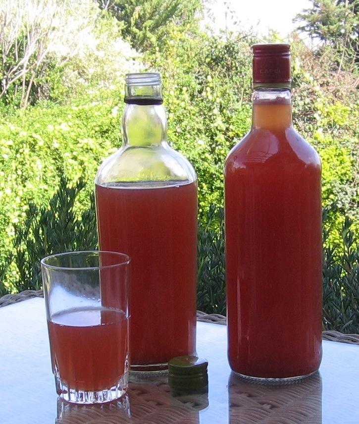 Чича (chicha drink) – питьевая брага южноамериканских индейцев