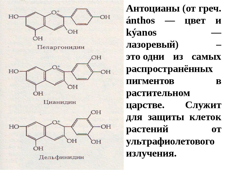 Антоцианы: что это такое полезные свойства где содержатся