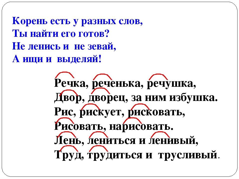 Что такое корень слова: определение, примеры, правила