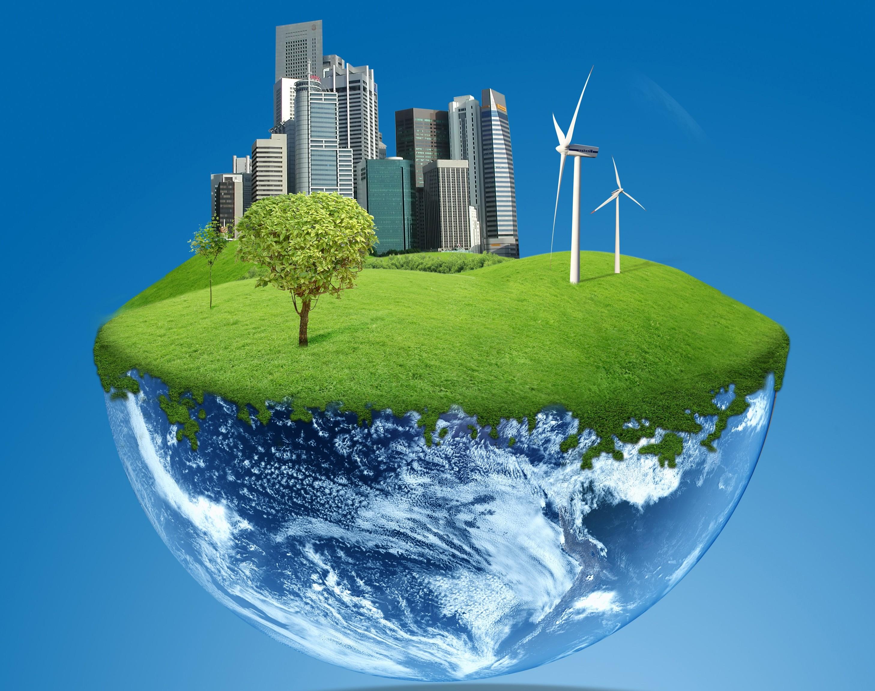 Что такое экология – определение