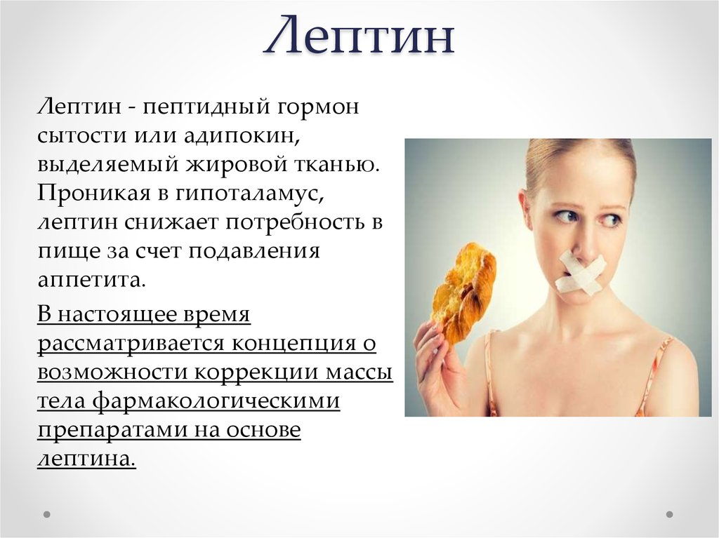 Гормон лептин: что за вещество, каковы его функции? оптимальные значения гормона, причины и лечение отклонений