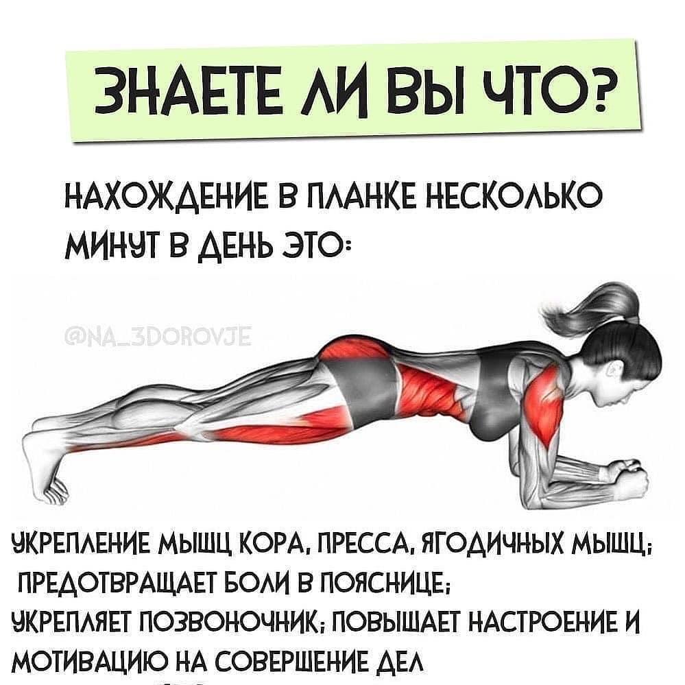 Как укрепить мышцы кора: 4 упражнения на каждый день
