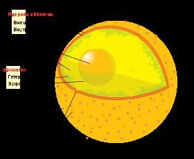 Что такое ядро linux | losst