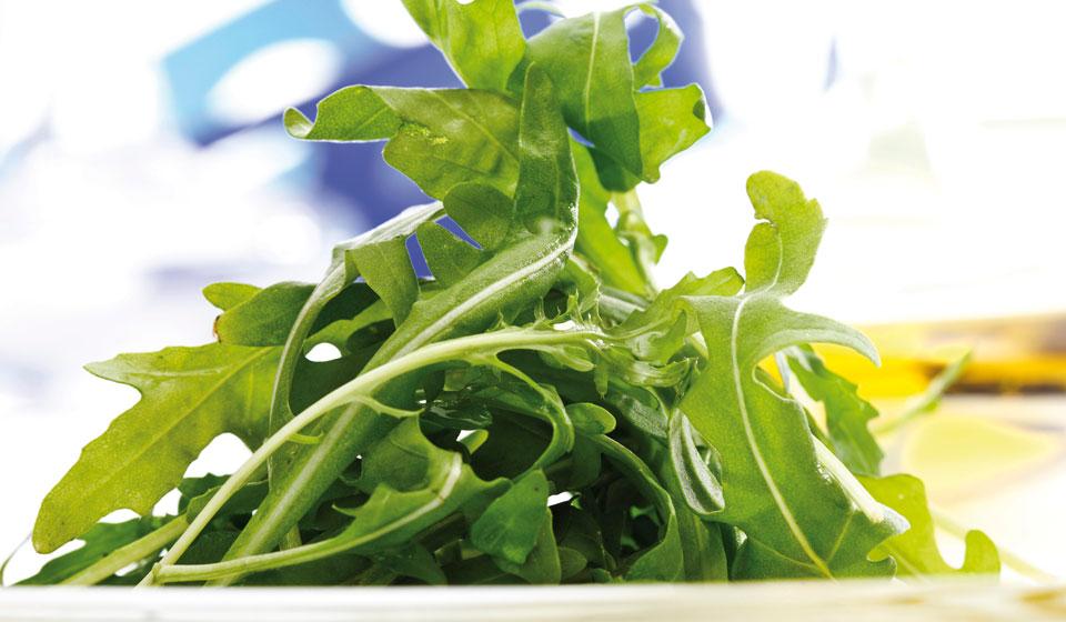Вкусный салат и мощное лекарство: руккола и ее 20 лечебных свойств