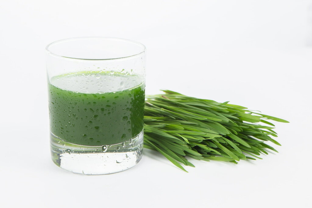 Витграсс - сок пшеницы: польза, вред, свойства, применение