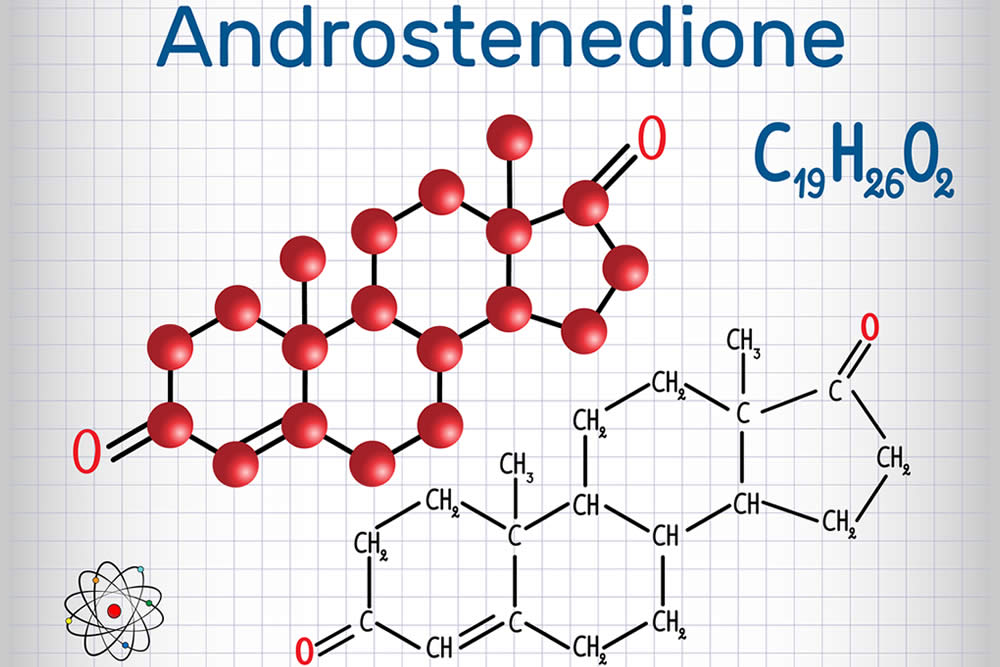 Андростендиол глюкуронид: нормы, причины отклонений