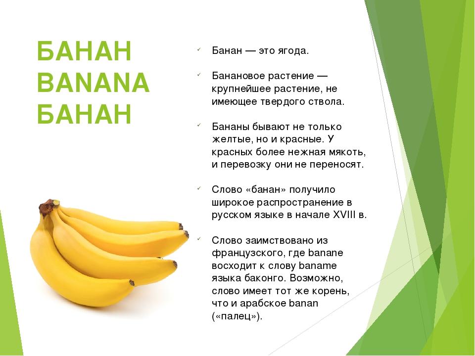 Что такое банан фрукт или ягода