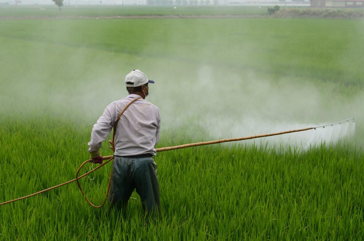 Ратицид | справочник пестициды.ru