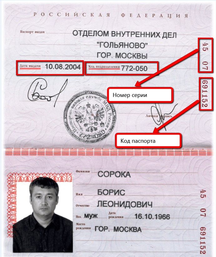 Серия и номер паспорта — где находятся? какому региону соответствуют серия и номер паспорта рф