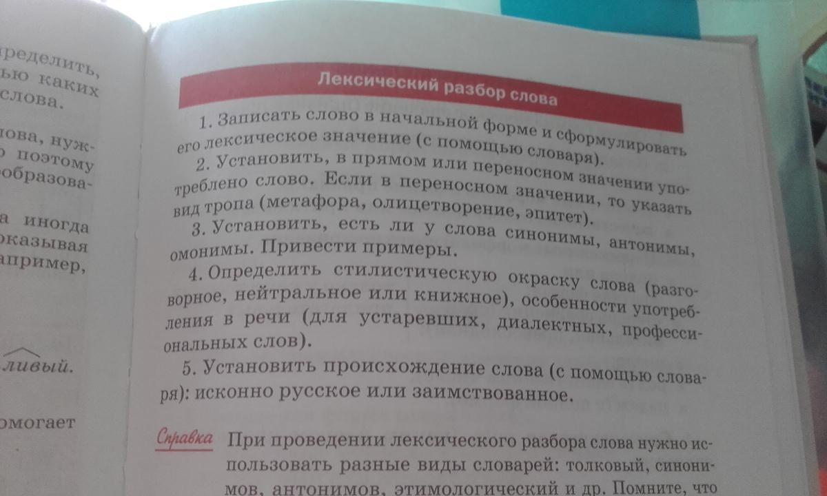 Лексический разбор слова – примеры, правила (5 класс, русский язык)