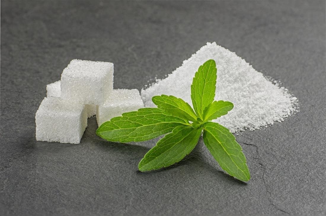 Стевия. польза и вред медовых листьев
