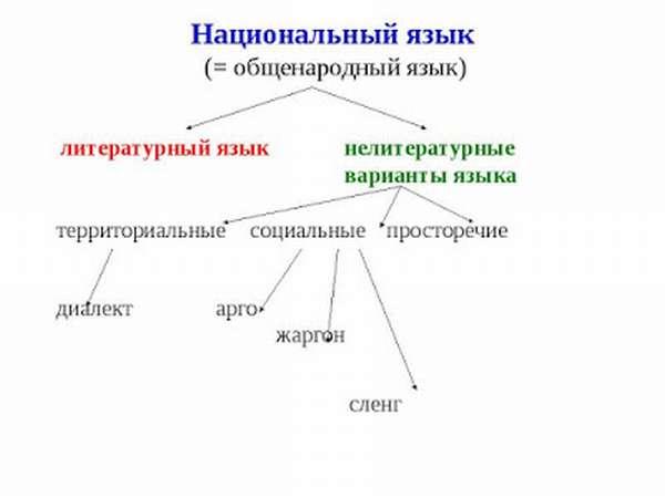 Что такое просторечие? литературный язык и слова-просторечия