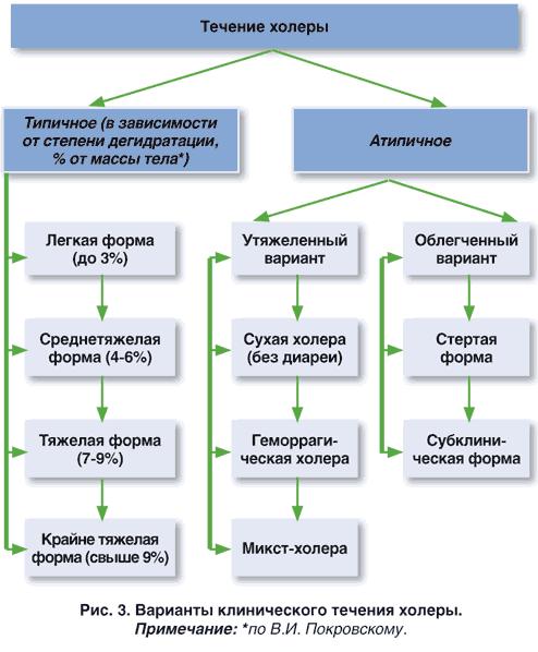 Что такое холера: причины, симптомы, профилактика и лечение инфекции — net-bolezniam.ru