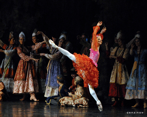 Что такое па-де-де в балете и в цирке, на плацу и в концертном зале