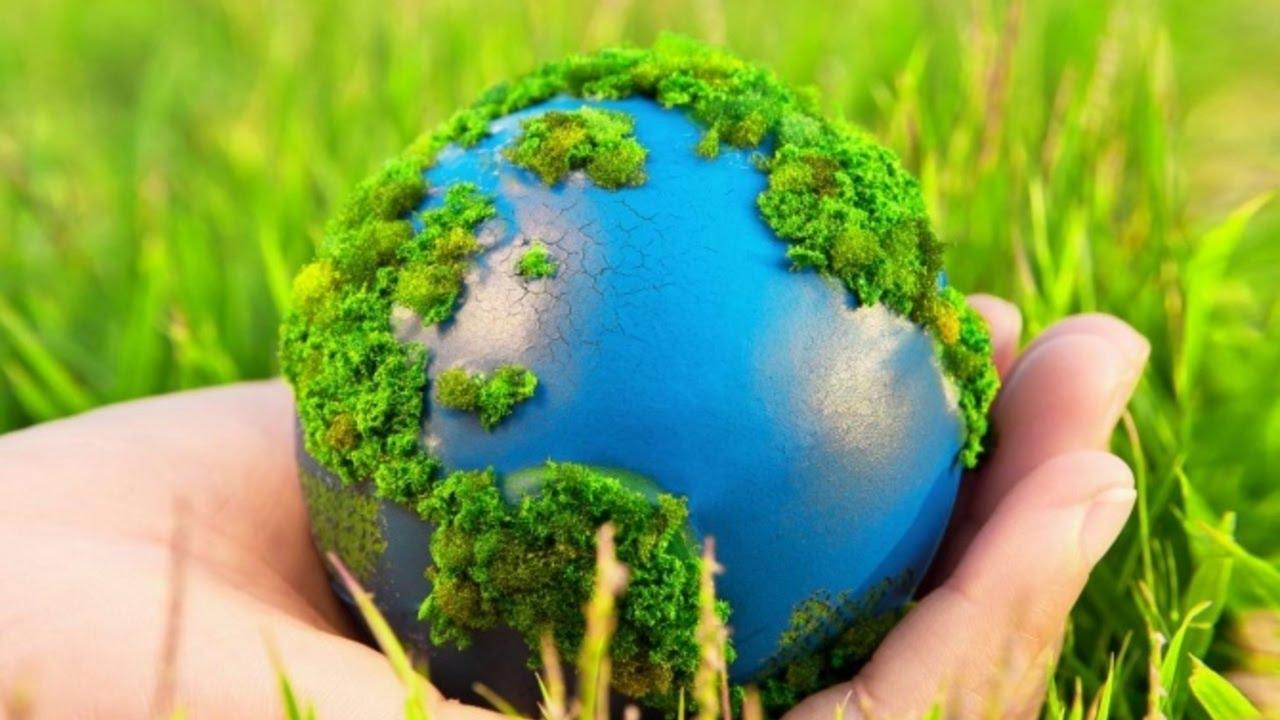 Охрана природы — википедия. что такое охрана природы