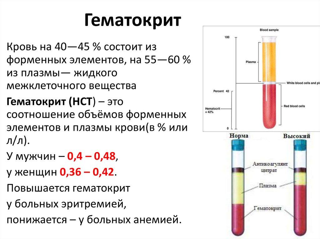 Гематокрит повышен - что это значит у ребенка, мужчины и женщины, основные причины и их устранение