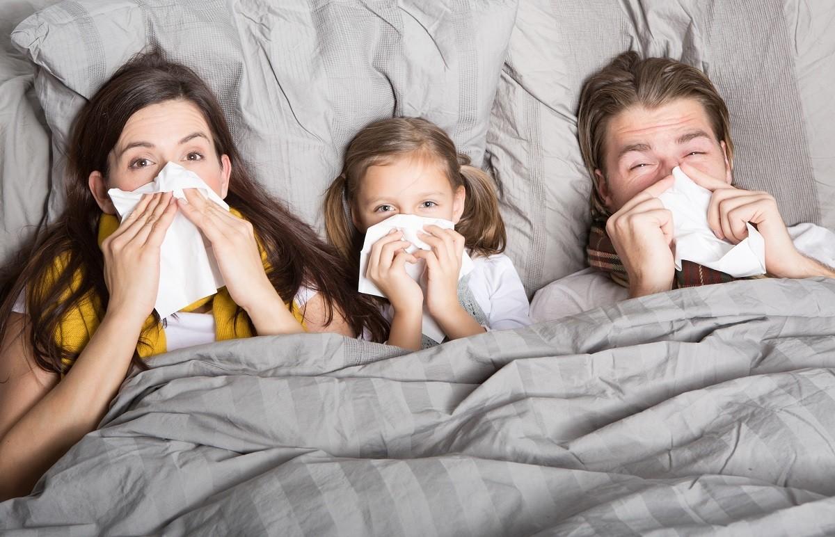 Вирус гриппа: его виды, сроки течения и лечение эффективными методами