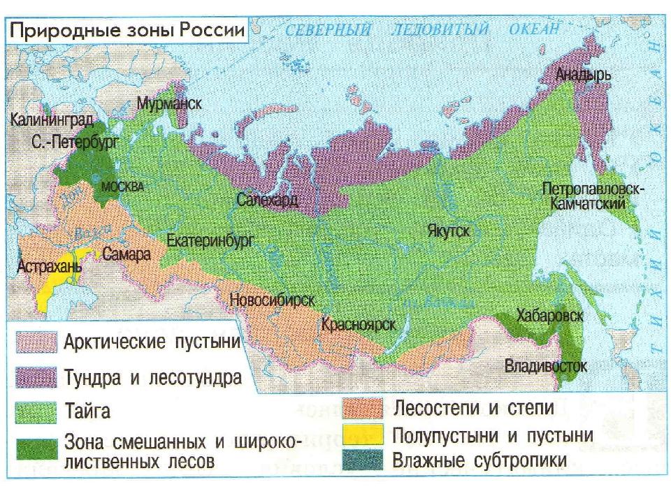 "Таблица ""характеристика природных зон"""
