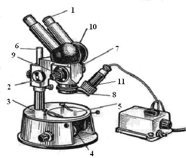 Оптический микроскоп — википедия. что такое оптический микроскоп