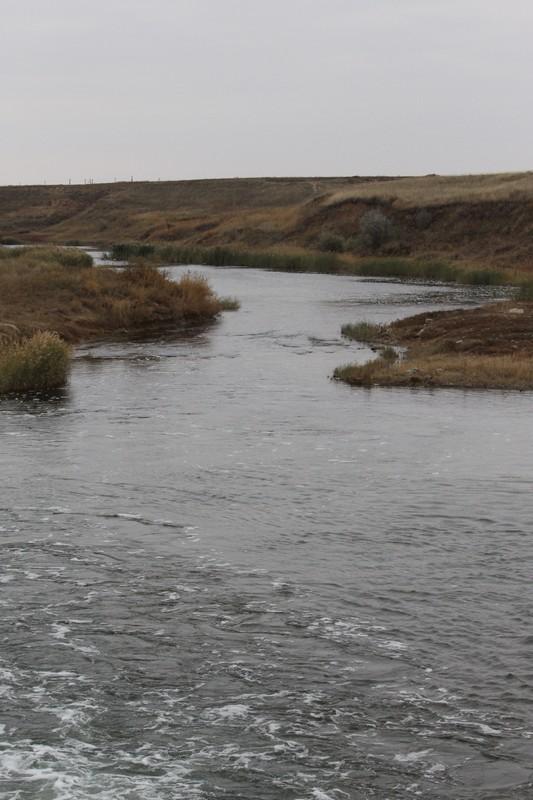 Что такое подземные артезианские воды, чем они отличаются и какой у них состав?