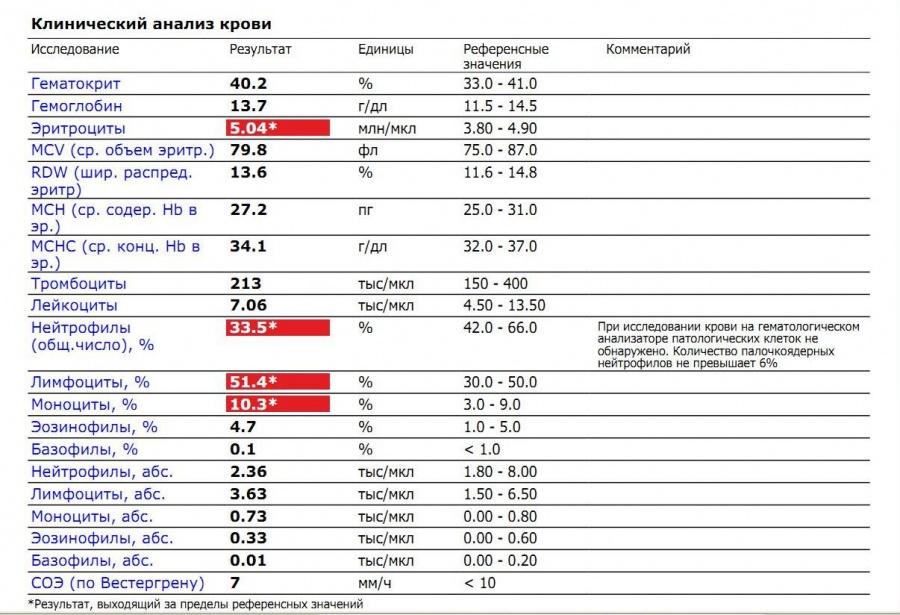 Rdw в анализе крови: что это такое, норма, расшифровка