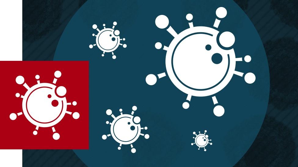 Вирус «троян» — вид вредоносных программ