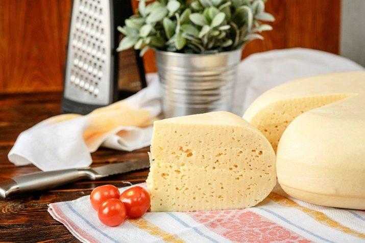 Сыр с пажитником: гурманские находки изумительного вкуса