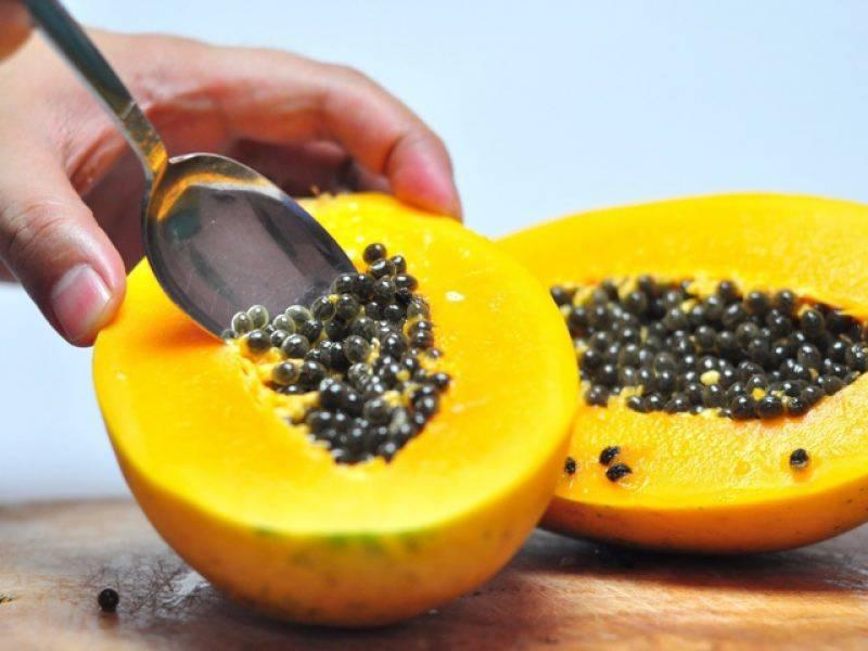 Папайя: польза и вред для организма, фото, калорийность