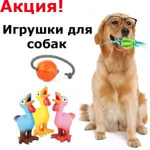 Фурминатор (расческа) для собак: способ забыть о«прелестях» линьки