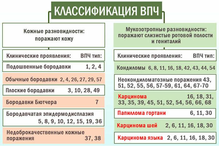 Вирус папилломы человека (впч) - симптомы, лечение
