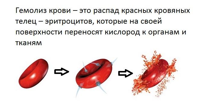 Гемолиз крови: что это такое, виды, причины разрушения эритроцитов, нормы индекса для женщин и мужчин