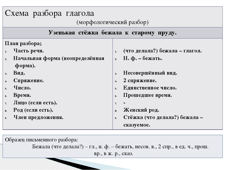 Спряжения глаголов – как определить, таблица 1 и 2 спряжения в русском языке, правило и исключения
