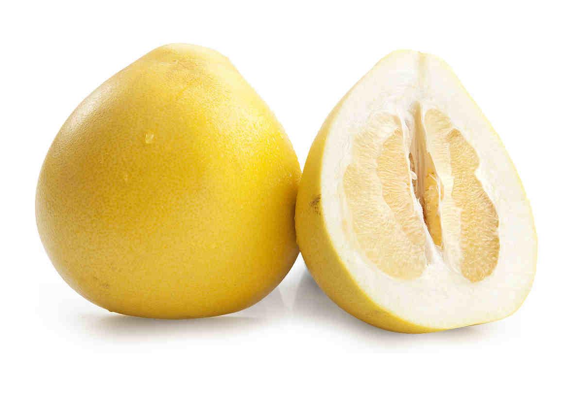 Помело (фрукт)