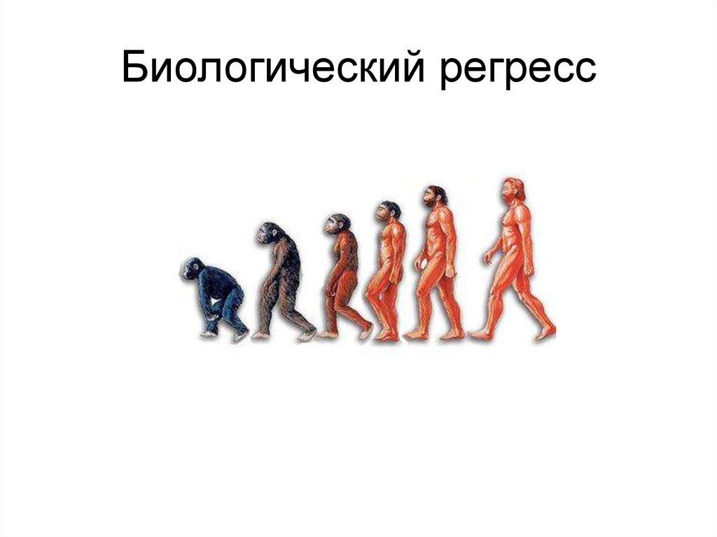Биологический регресс — википедия с видео // wiki 2