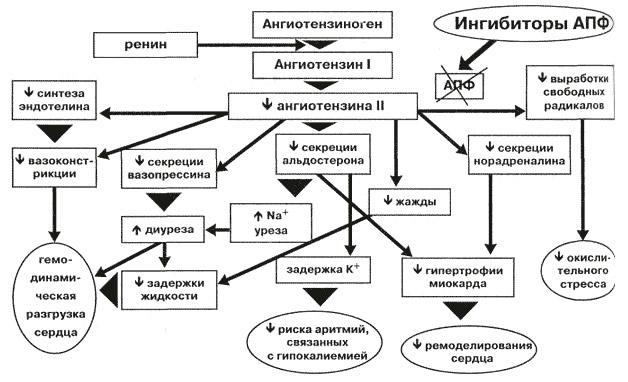 Ингибиторы апф — википедия с видео // wiki 2