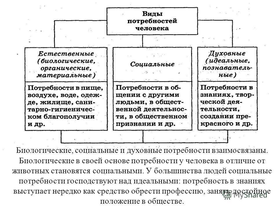 Потребности человека: понятия, виды, классификации – конструктор успеха