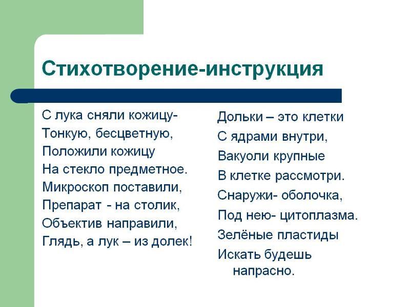 Пластиды - характеристика, строение, виды и функции - помощник для школьников спринт-олимпик.ру