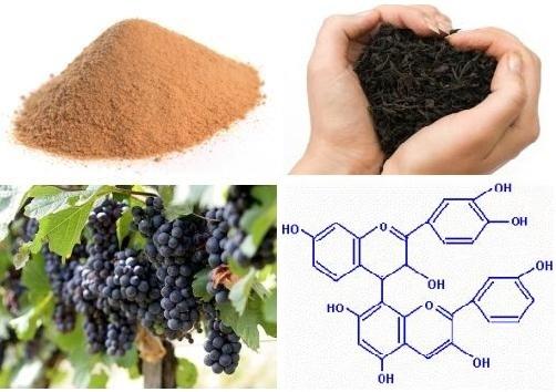 Что такое дубильное вещество. что такое дубильные вещества и как они влияют на организм | здоровье человека