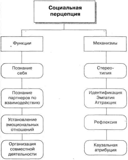 Психологическая характеристика механизмов педагогической социальной перцепции
