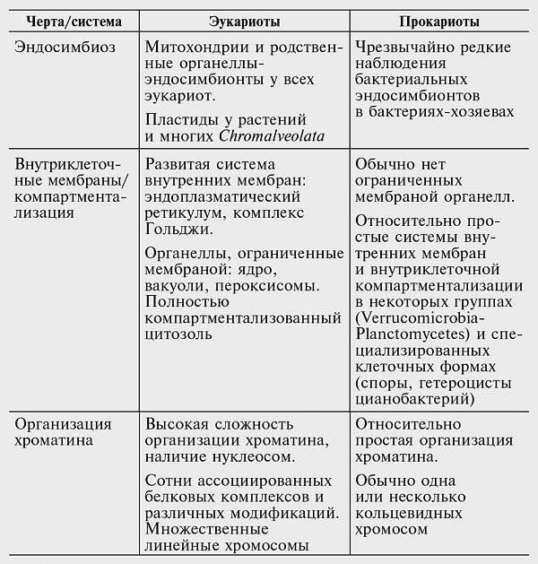 Эукариоты — циклопедия