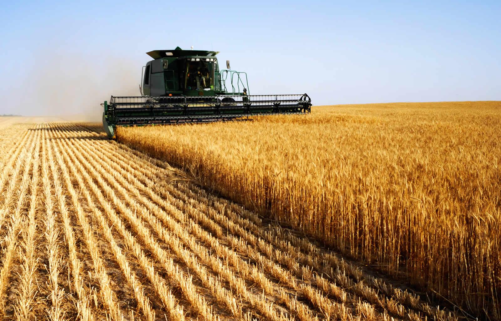 Точное земледелие: принцип работы и и перспективы