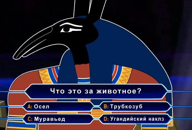 Что такое сет в бодибилдинге? | новости для умных - news4smart.ru