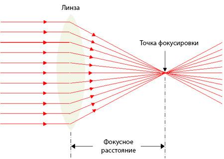 Линзы: виды линз (физика). виды собирающих, оптических, рассеивающих линз. как определить вид линзы?